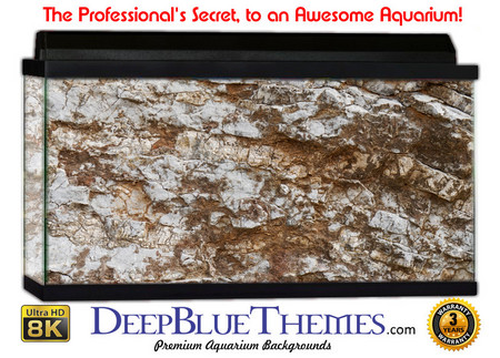 Buy Aquarium Background Rock Tan Aquarium Background