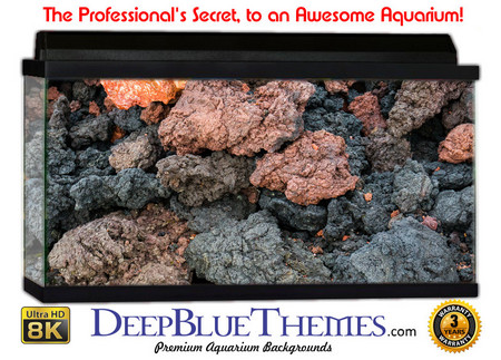 Buy Aquarium Background Rock Volcanic Aquarium Background