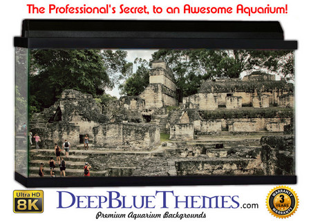 Buy Aquarium Background Ruins Ascend Aquarium Background