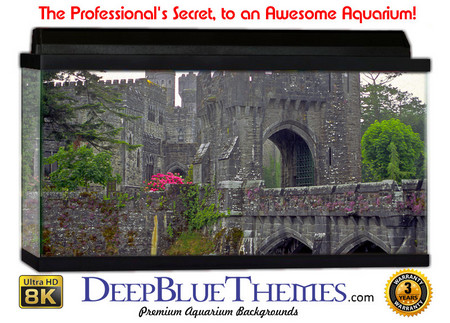 Buy Aquarium Background Ruins Ashford Aquarium Background
