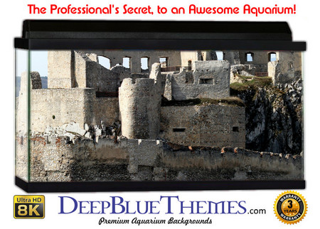 Buy Aquarium Background Ruins Beckov Aquarium Background