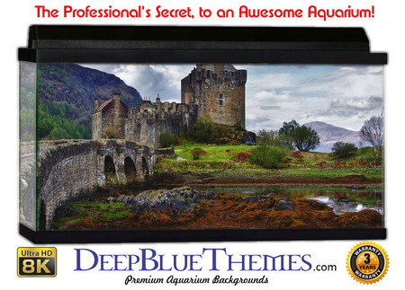Buy Aquarium Background Ruins Castle Aquarium Background
