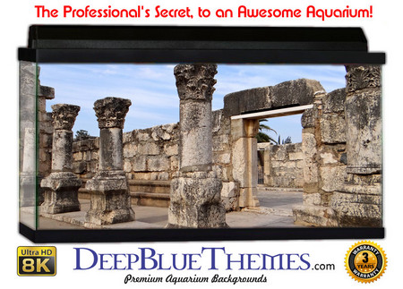 Buy Aquarium Background Ruins Chess Aquarium Background