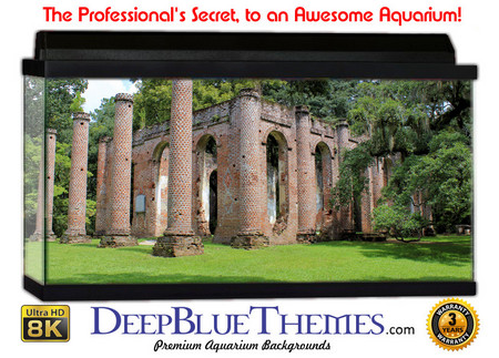 Buy Aquarium Background Ruins Church Aquarium Background