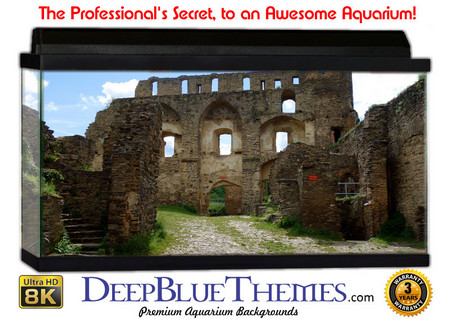 Buy Aquarium Background Ruins Driveway Aquarium Background