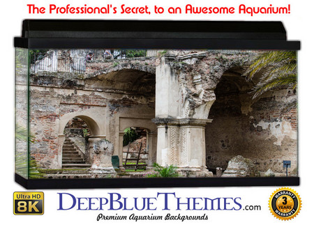Buy Aquarium Background Ruins Entry Aquarium Background