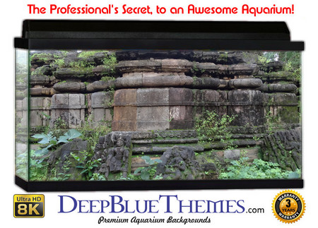 Buy Aquarium Background Ruins Polo Aquarium Background