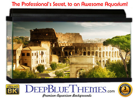 Buy Aquarium Background Ruins Rome Aquarium Background