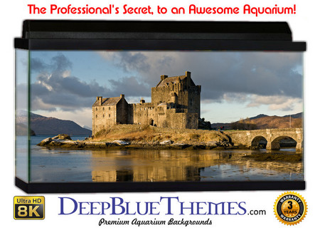Buy Aquarium Background Ruins Scotland Aquarium Background