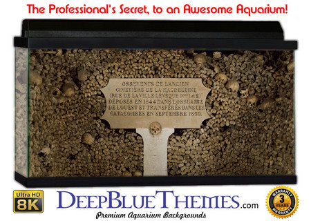 Buy Aquarium Background Ruins Sign Aquarium Background