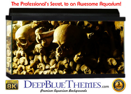 Buy Aquarium Background Ruins Skulls Aquarium Background