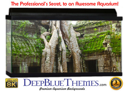 Buy Aquarium Background Ruins Tree Aquarium Background