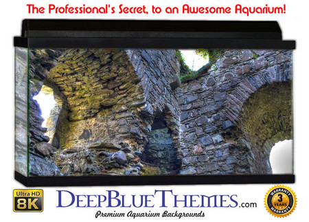 Buy Aquarium Background Ruins Window Aquarium Background