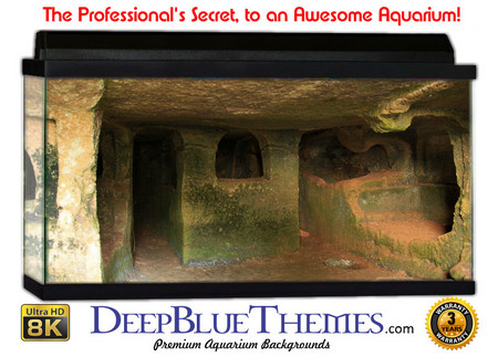 Buy Aquarium Background Ruins Windows Aquarium Background