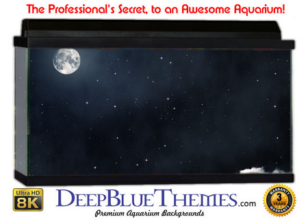 Buy Aquarium Background Sky Night Aquarium Background