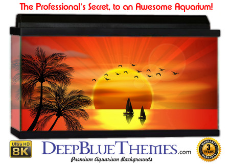 Buy Aquarium Background Sunset Paradise Aquarium Background