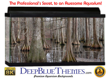 Buy Aquarium Background Swamp Dead Aquarium Background