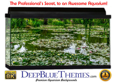 Buy Aquarium Background Swamp Lillies Aquarium Background