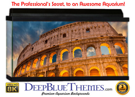 Buy Aquarium Background Travel Colosseum Aquarium Background