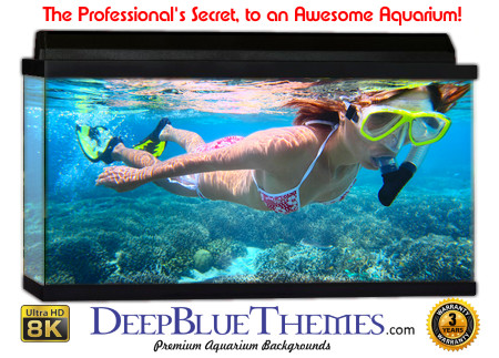 Buy Aquarium Background Unusual Diver Aquarium Background
