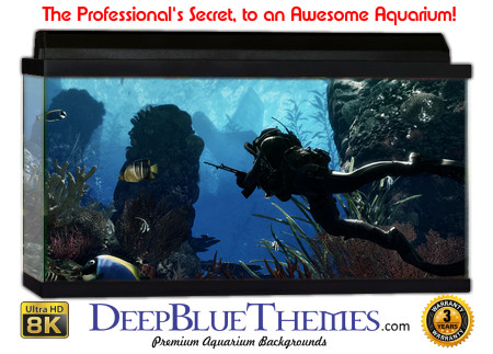 Buy Aquarium Background Unusual Game Aquarium Background