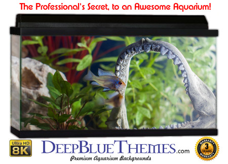 Buy Aquarium Background Unusual Jaw Aquarium Background