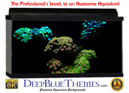 Buy Aquarium Background Unusual Light Aquarium Background