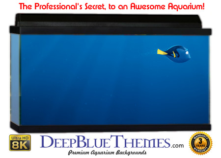 Buy Aquarium Background Unusual Lost Aquarium Background