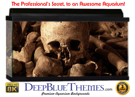 Buy Aquarium Background Unusual Skulls Aquarium Background