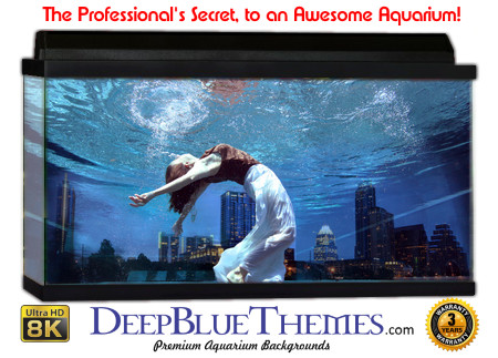 Buy Aquarium Background Unusual Swimmer Aquarium Background