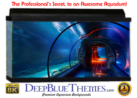 Buy Aquarium Background Unusual Tube Aquarium Background